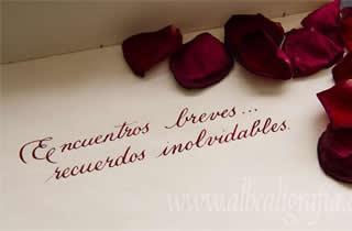 Texto caligráfico pon pétalos de rosa Encuentros breves recuerdos inolvidables